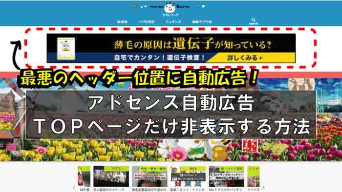 【再設定】Google AdSense自動広告をトップページのみ非表示にする方法|やっと解決★